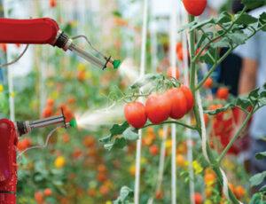 Robotique agricole